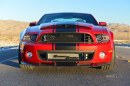 "Shelby Focus GT e Mustang GT500 Super Snake ""Wide Body"""