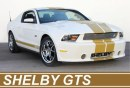 Shelby GT500 Super Snake, GT350 e GTS Limited Edition