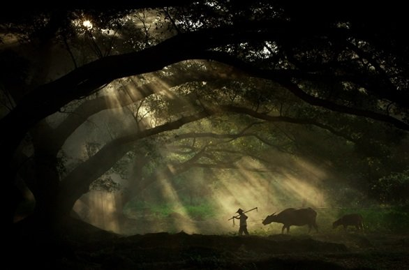 Sony_World_Photography_Awards_2011_Shortlist_Travel_Going_to_work_by_James_Chong