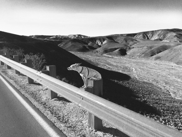 Affinità Elettive - Sitting On The Side Of The Highway © Ryan Fisher Martino