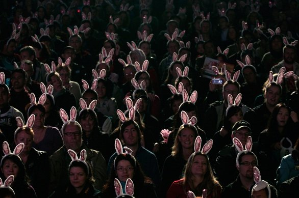 bp16_Visitors wearing rabbit ear headbands watch a night parade held to celebrate Chinese New Year in Hong Kong_February 3 2011_Tyrone Siu-Reuters