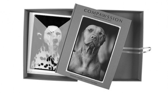 Box deluxe - Compawssion Portraits Of Rescued Dogs �© Frank Bruynbroek