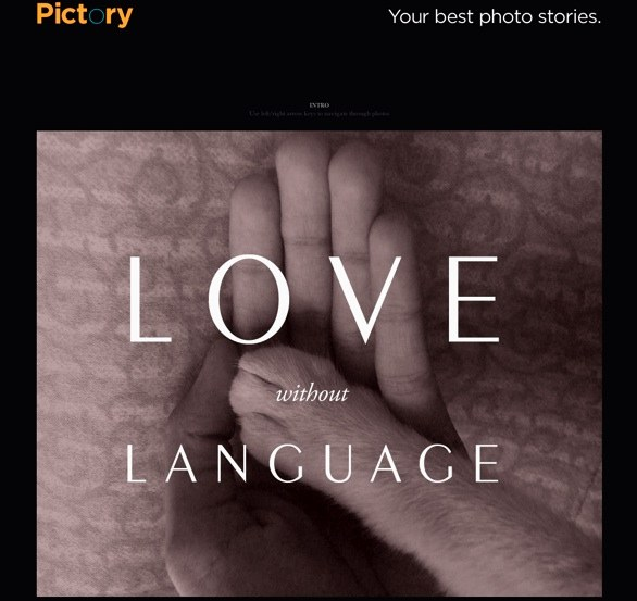 Pictory Magazine Love without Language