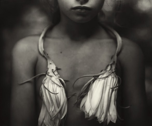 Night Blooming Cereus © Sally Mann Courtesy Gagosian Gallery