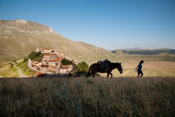 flat A woman walks with a horse in Castelluccio, Norcia