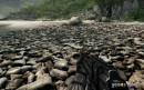 Crysis: texture pack amatoriale