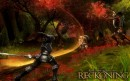 Kingdoms of Amalur: Reckoning - galleria immagini