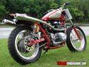 Thruxton Flat Track Special by Blondeel